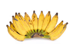 Культивируйте желтый азиатский банан изолированный на белизне Стоковая Фотография