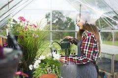 Культивируйте концепцию роста природы сада сезонную Стоковые Изображения
