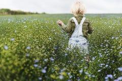 Культивируйте концепцию роста природы сада сезонную Стоковая Фотография