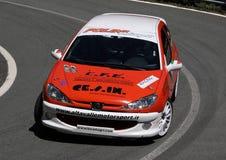 Клапан Peugeot 206 XS 16 Стоковые Фотографии RF