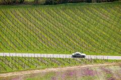 Классика резвится вождение автомобиля через bvineyard на короткие каникулы выходных Стоковое Изображение RF