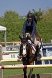 классицистическая выставка лошади hampton Стоковые Изображения RF