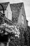 Классические великобританские дома с цветочным горшком Стоковое Фото