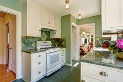 Классический американский интерьер комнаты кухни в зеленых и белых тонах Стоковое Изображение RF