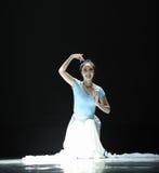 Классический балет: Вальс цветков Стоковые Фото