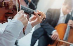 Классический выполнять раздела строки оркестра Стоковое Фото