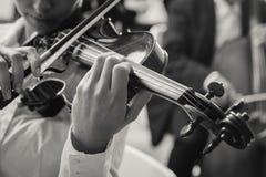 Классический выполнять раздела строки оркестра Стоковые Фотографии RF