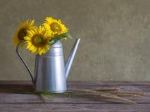 Классический натюрморт с красивым букетом солнцецветов Стоковые Фото