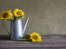 Классический натюрморт с красивым букетом солнцецветов Стоковая Фотография