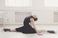 Классический портрет артиста балета Стоковые Фотографии RF
