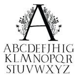 Классический прописной шрифт Стоковое Фото