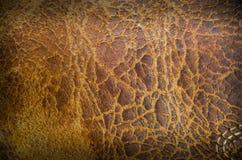 Классический ретро винтажный стиль с старой кожаной предпосылкой Стоковые Фото