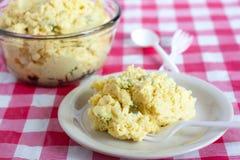 Классический салат картошки Стоковое Фото