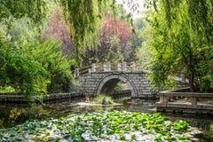 классический сад Стоковое Изображение RF