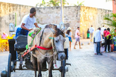Классический экипаж лошади в Cartagena Стоковая Фотография RF