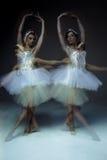 2 классических артиста балета Стоковая Фотография RF