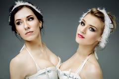 2 классических артиста балета Стоковое Фото