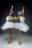 2 классических артиста балета Стоковое Изображение