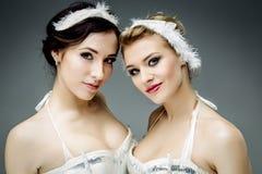 2 классических артиста балета Стоковые Изображения RF