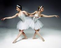 2 классических артиста балета Стоковые Фотографии RF