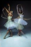 2 классических артиста балета Стоковые Фото