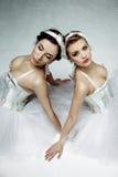 2 классических артиста балета Стоковая Фотография