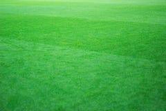 Классическое фото футбольного поля Естественная зеленая лужайка Стоковое Фото
