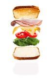 Класть совместно сыр и сэндвич с ветчиной Стоковые Фотографии RF