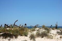 Кладбище анкера в Португалии Стоковое Изображение