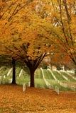 Кладбище Арлингтона в листьях осени Стоковое фото RF