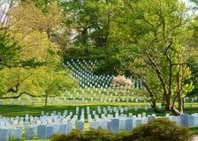 Кладбище Арлингтон национальное Стоковое Изображение RF