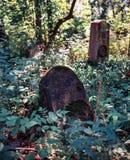 кладбище еврейское Стоковое фото RF