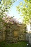 Кладбище Иствуда старое, Глазго Стоковое Фото