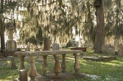 Кладбище рощи кедра Стоковые Фото
