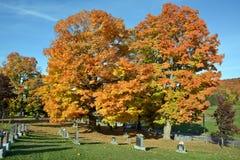 Кладбище святой троицы Стоковое Изображение RF