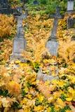 кладбище старое Стоковые Фотографии RF