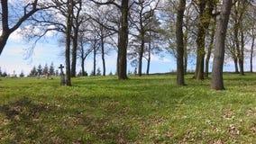 кладбище стоковая фотография