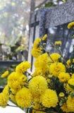 Кладбище Rakowicki, Краков, Польша Стоковые Изображения