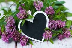 Клевер с сердцем стоковая фотография