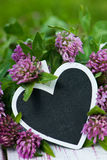 Клевер с сердцем стоковые фотографии rf