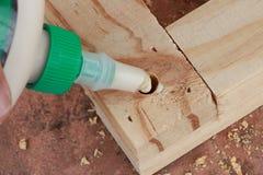 Клеить соединение на шпильках Стоковые Фотографии RF