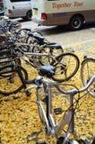 Кленовые листы велосипеда Стоковая Фотография
