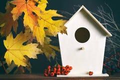 Кленовые листы и birdhouse осени желтые Стоковая Фотография