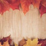 Кленовые листы осени на деревянной таблице стоковое изображение rf