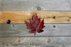 Кленовые листы осени обрамляя деревенскую деревянную предпосылку Стоковая Фотография