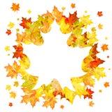 Кленовые листы осени Стоковое фото RF