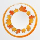 Кленовые листы счастливого ярлыка благодарения красивые Стоковое Изображение