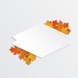 Кленовые листы счастливого ярлыка благодарения красивые Стоковые Изображения