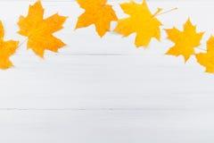 Кленовый лист на белой деревянной предпосылке Стоковые Изображения RF