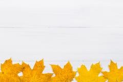 Кленовый лист на белой деревянной предпосылке Стоковые Фото